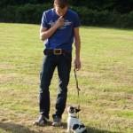 Eerste cursus Hondenschool Hulst. Training van de houdingen