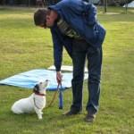 Eerste Cursus Hondenschool Hulst 2011. Training van de houdingen